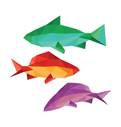 collection of different fish vector image