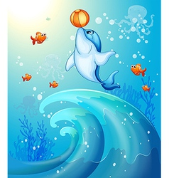 A dolphin playing a ball under the sea vector image