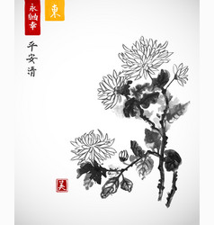 Chrysanthemum flowers traditional oriental ink vector