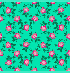 drawing branches with flowers roses bloom in pink vector image