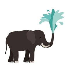 Elephant animal icon vector