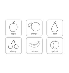 fruits and berries contours objects outline icons vector image