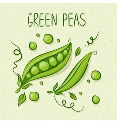 Green Peas with text above vector image