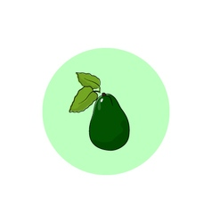 Icon Colorful Avocado vector