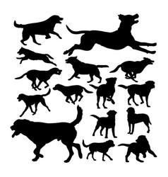 labrador dog animal silhouettes vector image