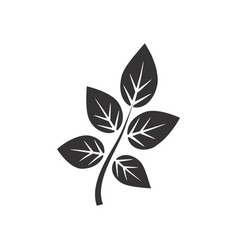 leaves icon and symbol vector image