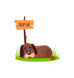 lying homeless dog with a poster adopt me dont vector image