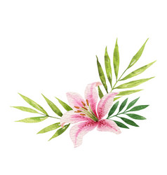 Watercolor bouquet with lily flower and vector