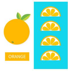 orange fruit icon set slice in a row cut half vector image vector image