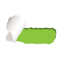 paper tear vector image vector image