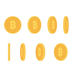 bitcoin gold coin at different angles for vector image vector image