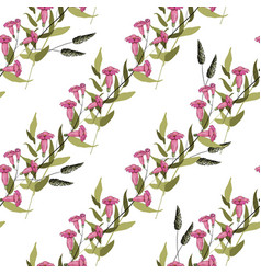 blooming realistic isolated flowers hand drawn vector image