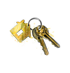 Bunch of keys with house shaped trinket vector
