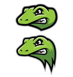 green gecko lizard reptile head logo mascot vector image