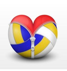 Red heart inside volleyball ball vector
