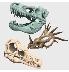 Three skulls of ancient large animals vector image
