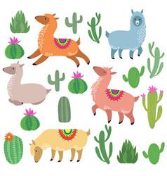 cute alpaca lamas wildlife llama vector image