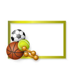 soccer tennis basketball balls dumbbells frame vector image vector image