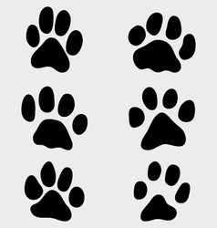 paw of cats vector image vector image