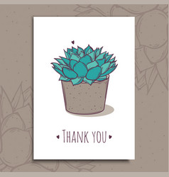 decoration plant succulent polyphilla greeting vector image