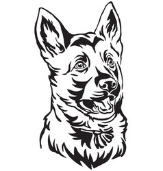 decorative portrait of puppy german shepherd dog vector image