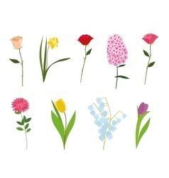 Set flowers isolated vector