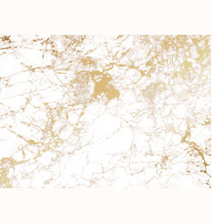 white marble background with golden texture vector image