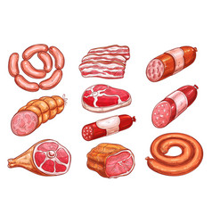 sausage and meat sketch set for food design vector image vector image