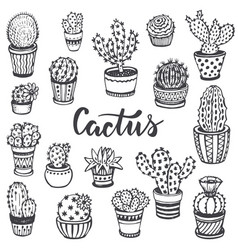 collection hand drawn cactus in sketch style vector image