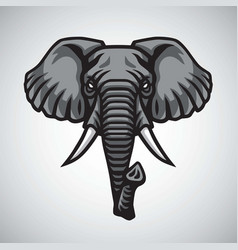 elephant head logo mascot premium design vector image