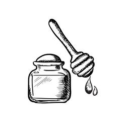 Honey jar with wooden dipper sketch vector image