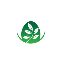 leaf eco nature logo vector image