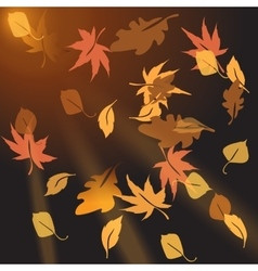 Multi-colored autumn leaves crumbling at sunset vector