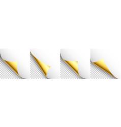 Set golden paper curls curled page corner vector