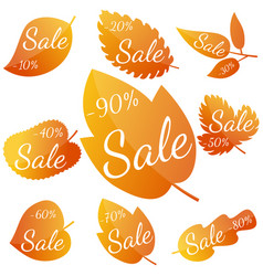 set of autumn yellow-red leave vector image