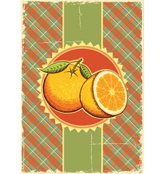 Orange fresh fruits vector image vector image