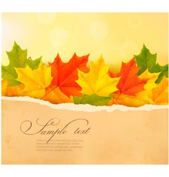autumn background with autumn leaves and old paper vector image
