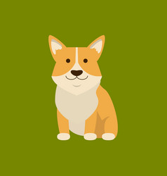 cartoon character welsh corgi on a green vector image