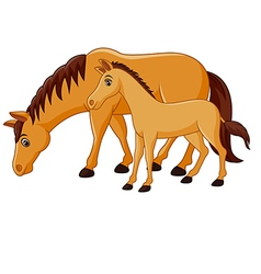 Cartoon happy brown horse with a foal vector