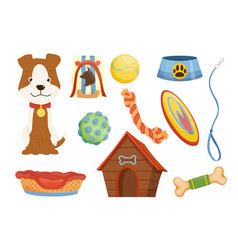 collection pet shop icons dog leash pet care vector image
