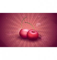 Fresh cherries vector