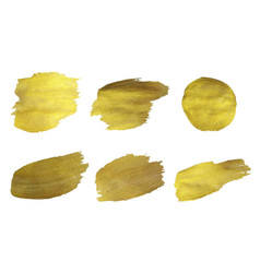 Golden paint set isolated white background vector