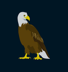 In flat style eagle vector