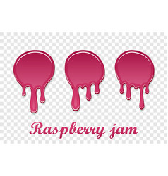 red raspberry drip confiture 3d set berry sweet vector image