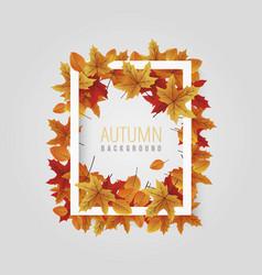 white leaf autumn frame background vector image