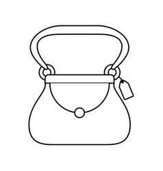 women fashion accesory vector image vector image
