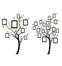 family tree with photo frames family tree with vector image