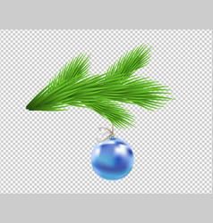 christmas tree branch with glassy blue ball vector image