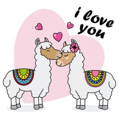 couple of llamas in love vector image
