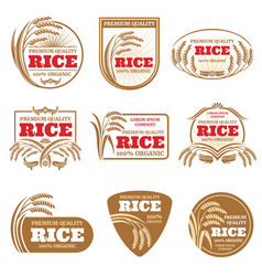 paddy rice labels organic natural product vector image
